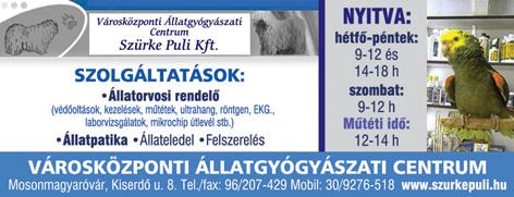 Szürke Puli Kft. Városközponti Állatgyógyászati Centrum