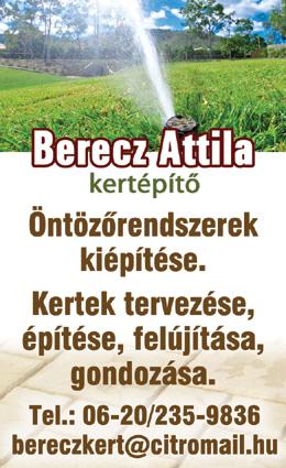 Berecz Attila - Kertépítő